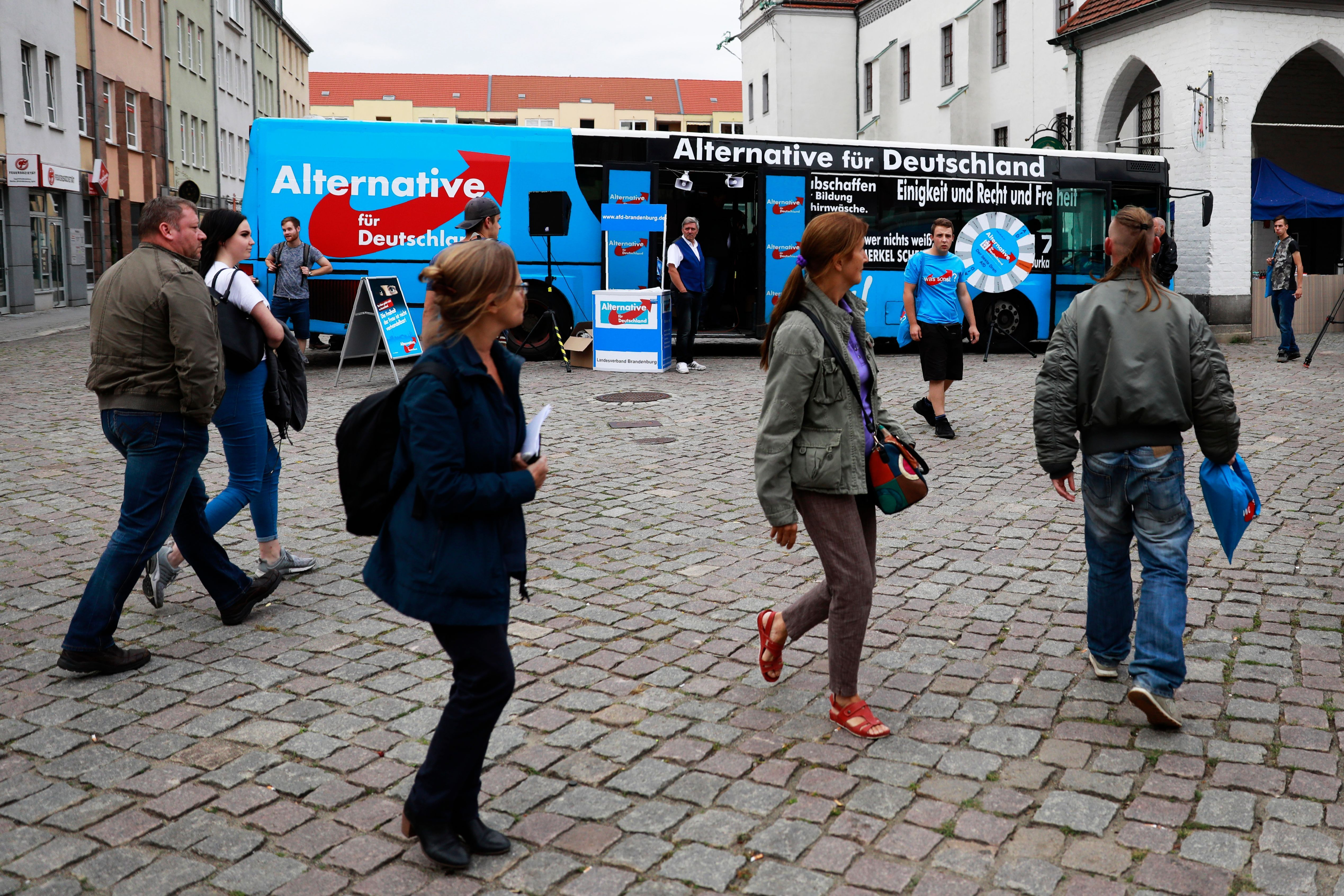 afd voters