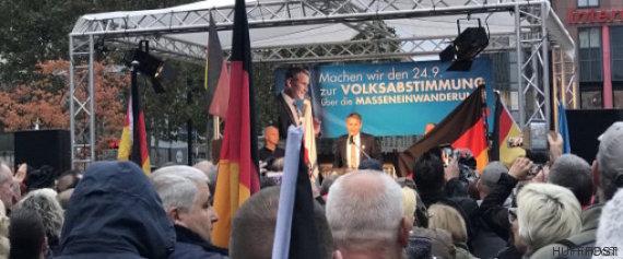 elections allemandes afd