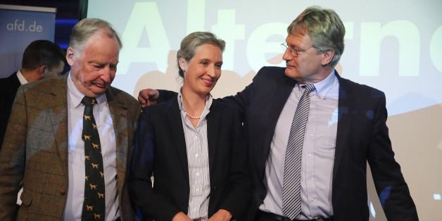 Wer hat die AfD gewählt - und warum?