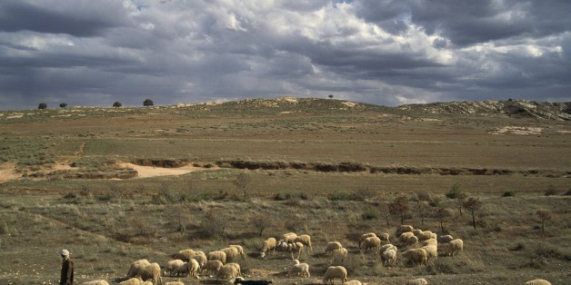 ALGERIA - MARCH 18: A flock of sheep and a shepherd, Djebel Amour mountain chain, Algeria. (Photo by DeAgostini/Getty Images)