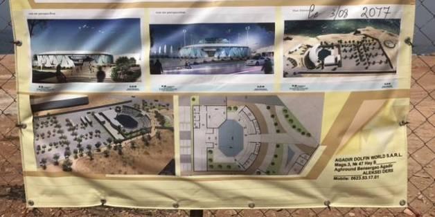 Polémique: On en sait plus sur le futur parc à dauphins d'Agadir