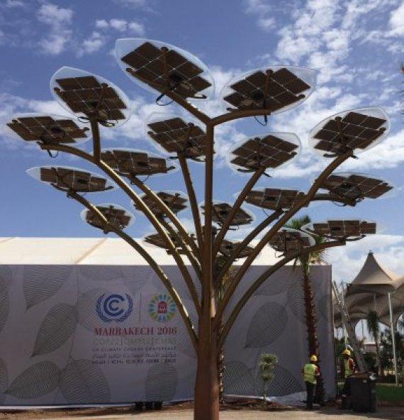solar tree marrakech cop22