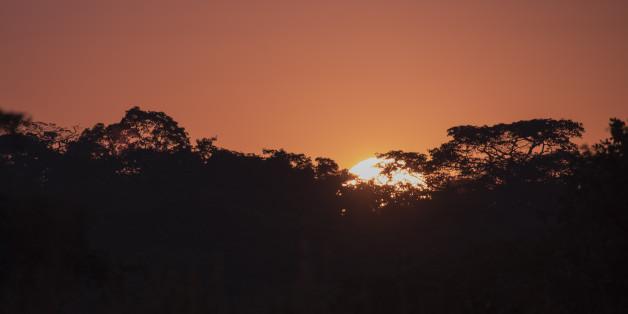 Raising Sun over Trees, Kasungu National Park, Malawi