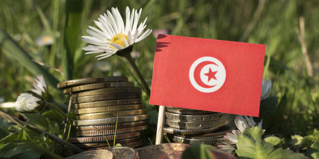Tunisian flag with stack of money coins with grass and flowers