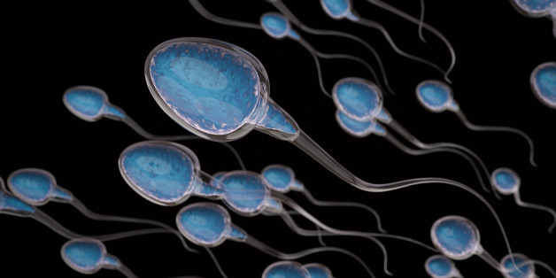 3d rendering group of sperms