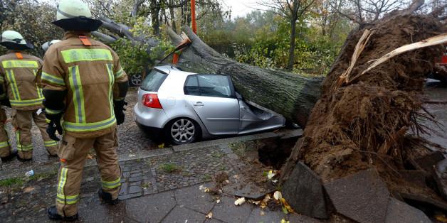 Bäume stürzen um, Äste fallen zu Boden, Gerüste krachen zusammen, Dächer werden abgedeckt und Autos beschädigt.