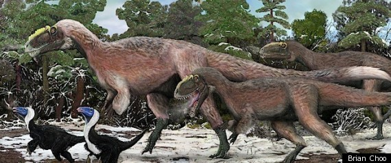 Feathered Tyrannosaur