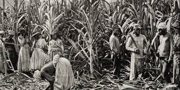Antique photograph of Cane cutters in Jamaica