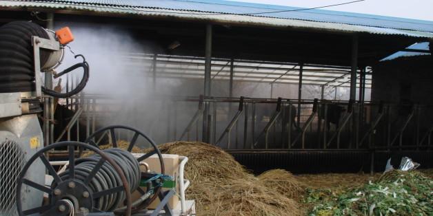 *자료사진: 축산 농가 방역 현장 모습