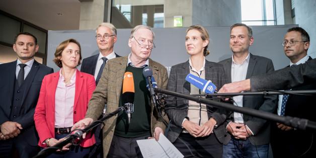 AfD-Fraktionsvize Peter Felser rechts außen mit der AfD-Bundestagsfraktion
