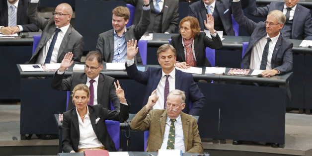 AfD-Bundestagsfraktion (Archivbild)