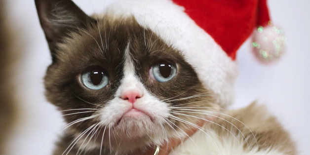 Grumpy Cat arrives to ride in the 84th Annual Hollywood Christmas Parade in the Hollywood section of Los Angeles, California, November 29, 2015. REUTERS/David McNew