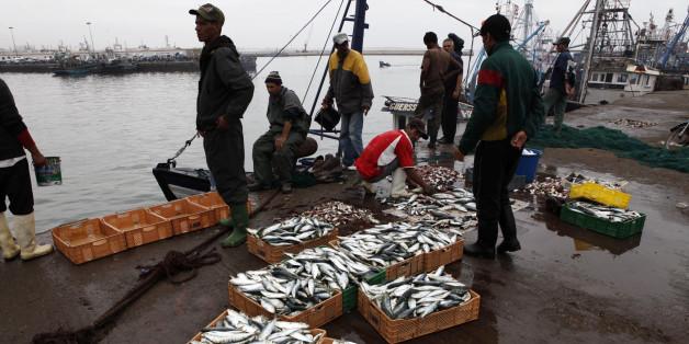 Des pêcheurs dans le port d'Agadir.