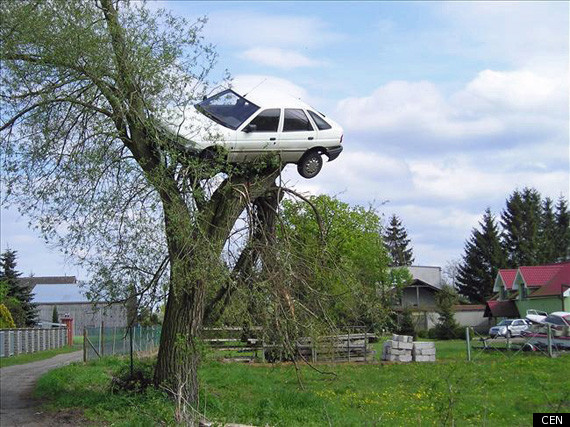 2018/2019 Premier League Discussion Part III - Page 37 CAR-IN-TREE