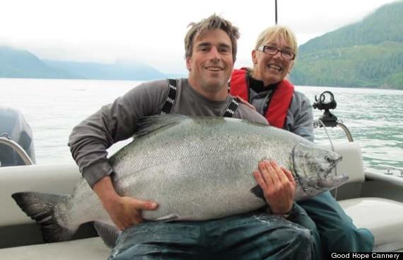 big salmon fish