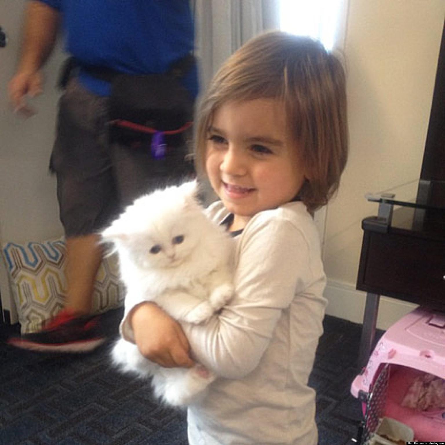 Kourtney Kardashian\'s Son Mason Disick Cuddles Aunt Kim\'s Kitten ...