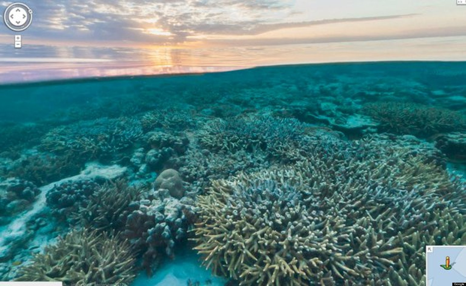 Googles underwater maps show coral reefs stunning sea life views googles underwater maps show coral reefs stunning sea life views photos video huffpost gumiabroncs