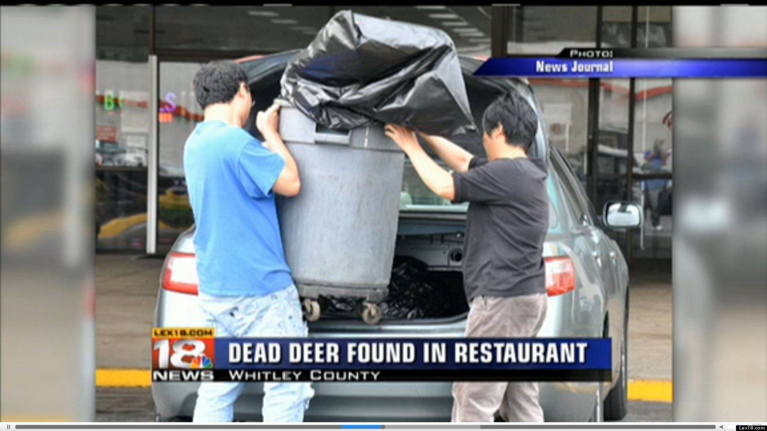 chinese restaurant closed after dead deer found inside kitchen customers repulsed by roadkill video huffpost