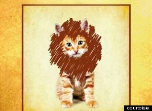 chat qui voulait être un lion