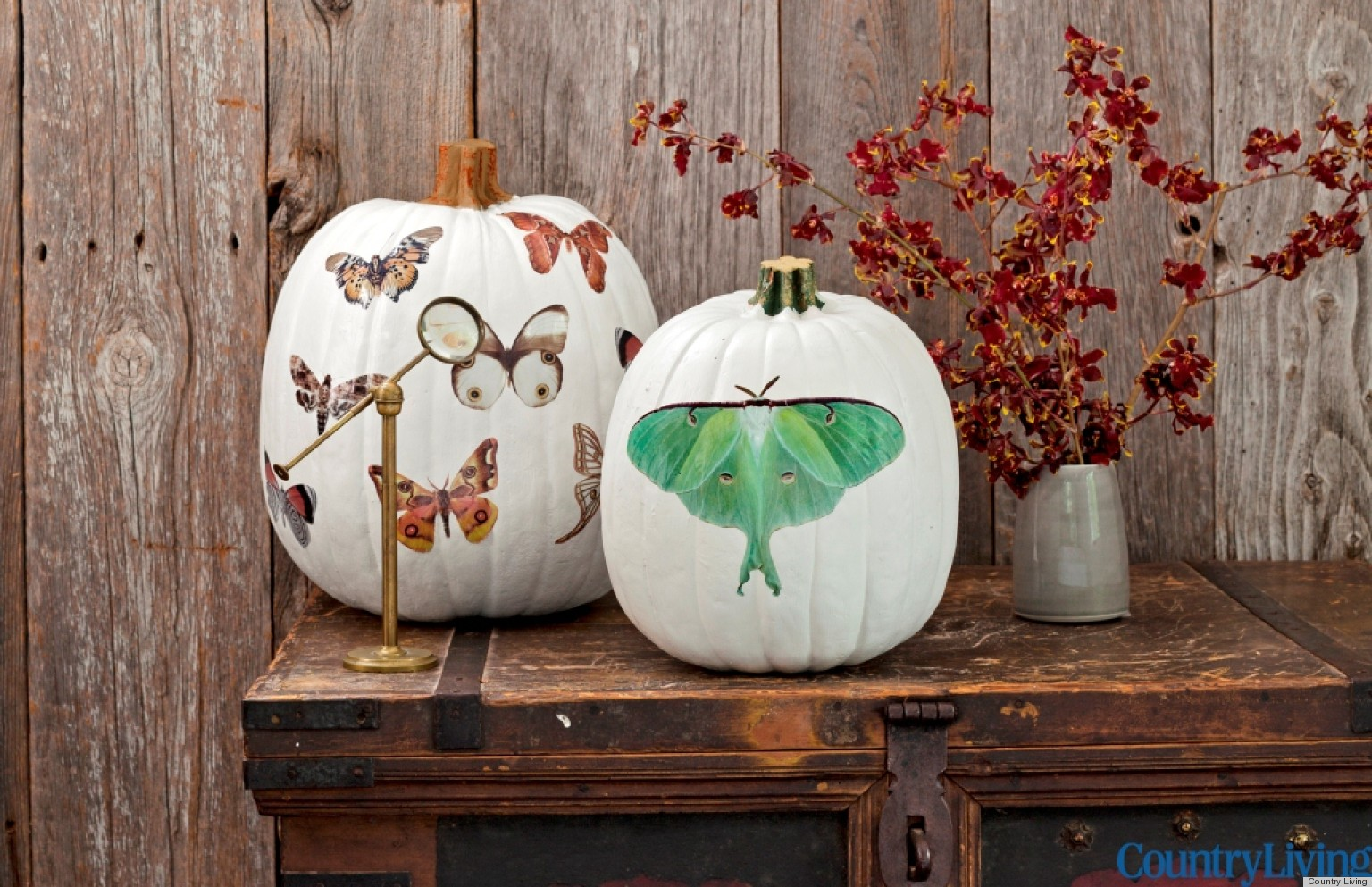 Simple Halloween Decor Part - 21: Halloween Decorations: Moth Decal Pumpkins From Country Living | HuffPost