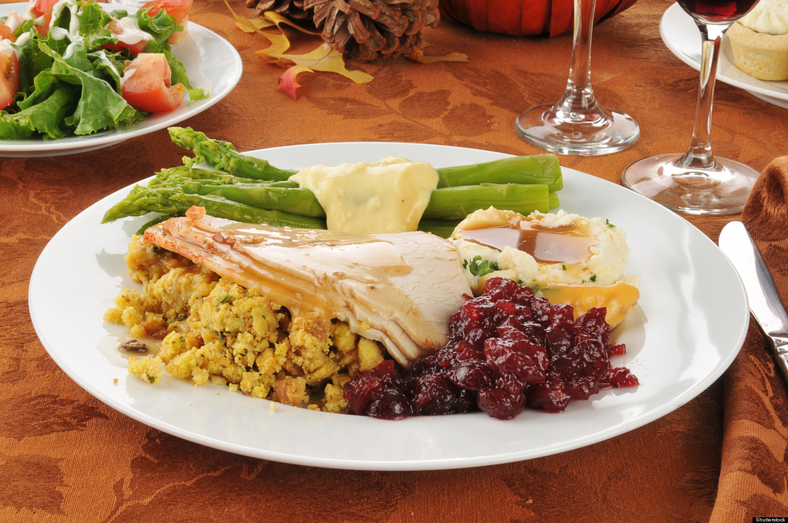 It is hard to picture a holiday feast without the turkey. Whether you are thinking about Thanksgiving or Christmas, turkey is a staple food during certain times of the year.