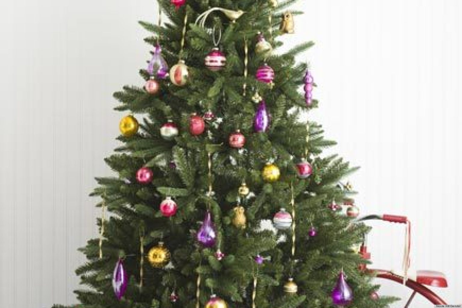 Christmas Trees In India Part - 38: Huffington Post