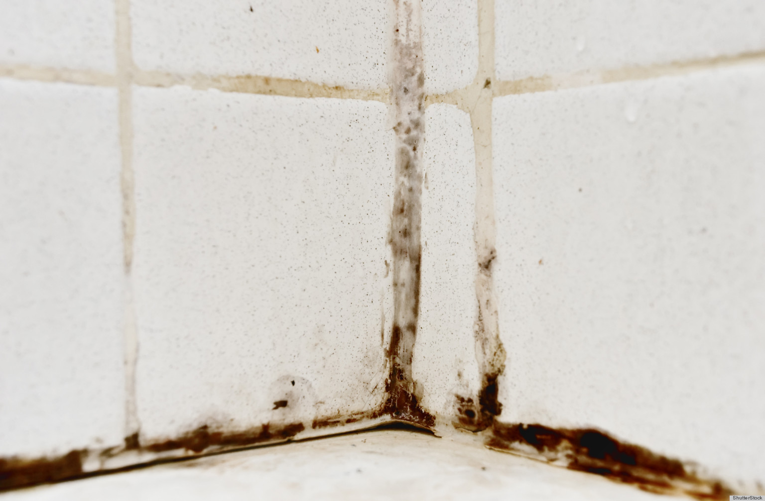 How To Remove Mold From Your Bathtub HuffPost