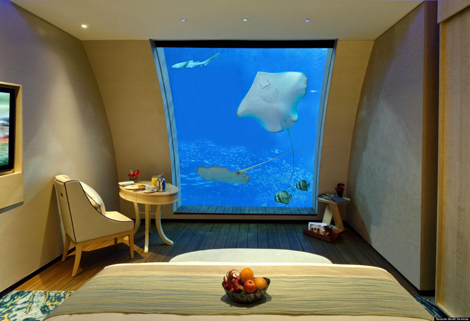 Singapore Aquarium Hotel New Sentosa Suites With Windows Photos Huffpost