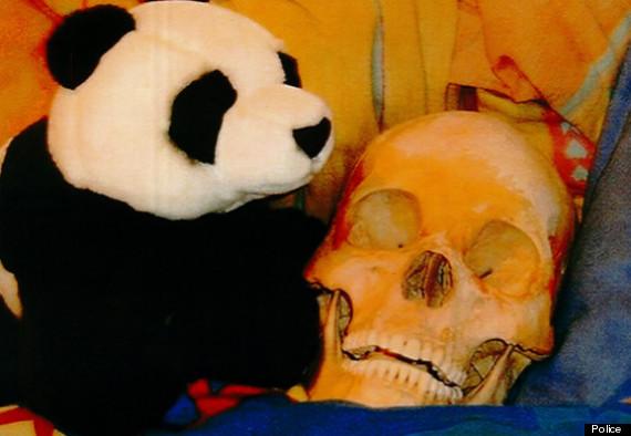 skull and teddy