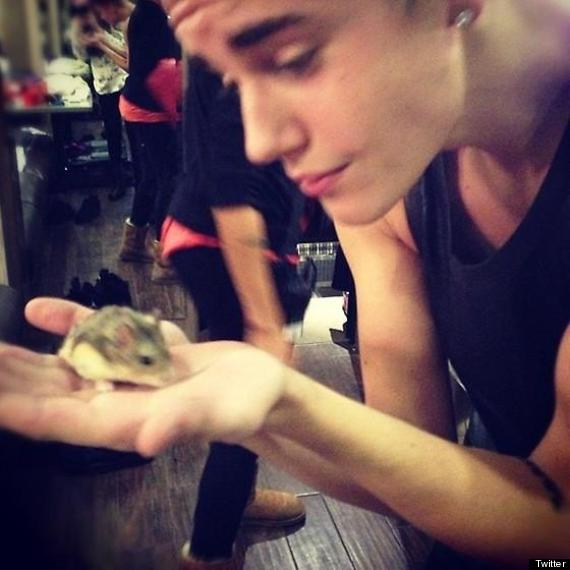 justin bieber and pac the hamster