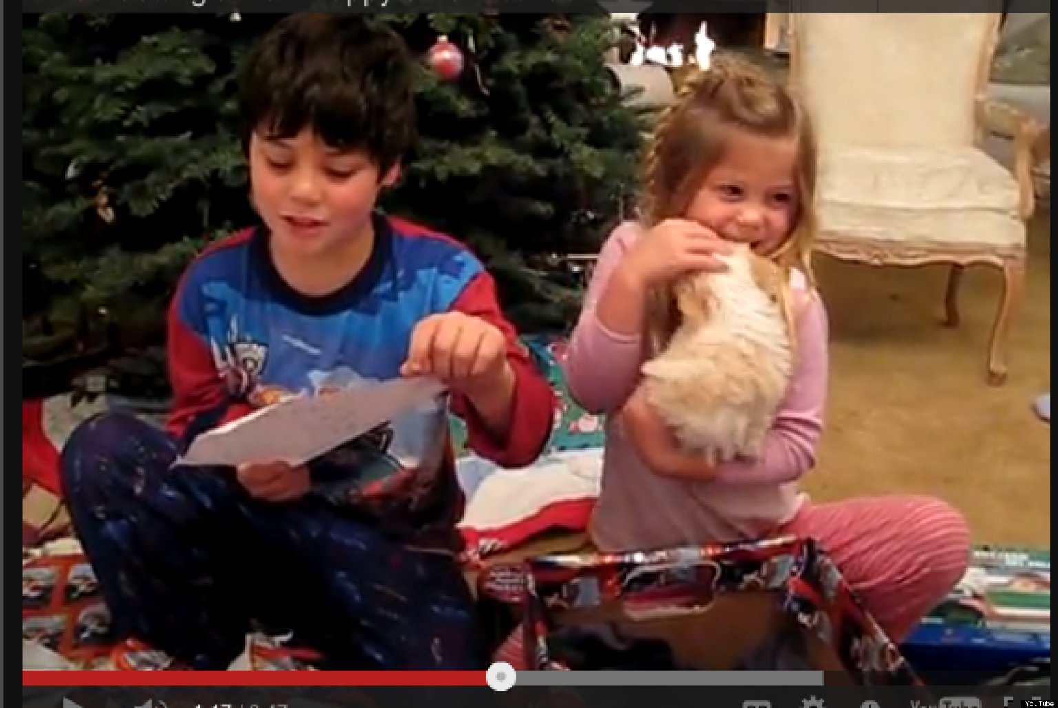 Kids Getting Puppies For Christmas (VIDEOS) | HuffPost
