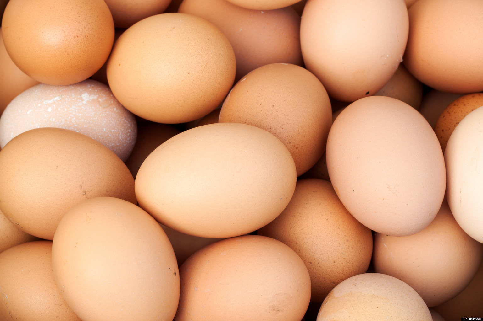 Dating eggs