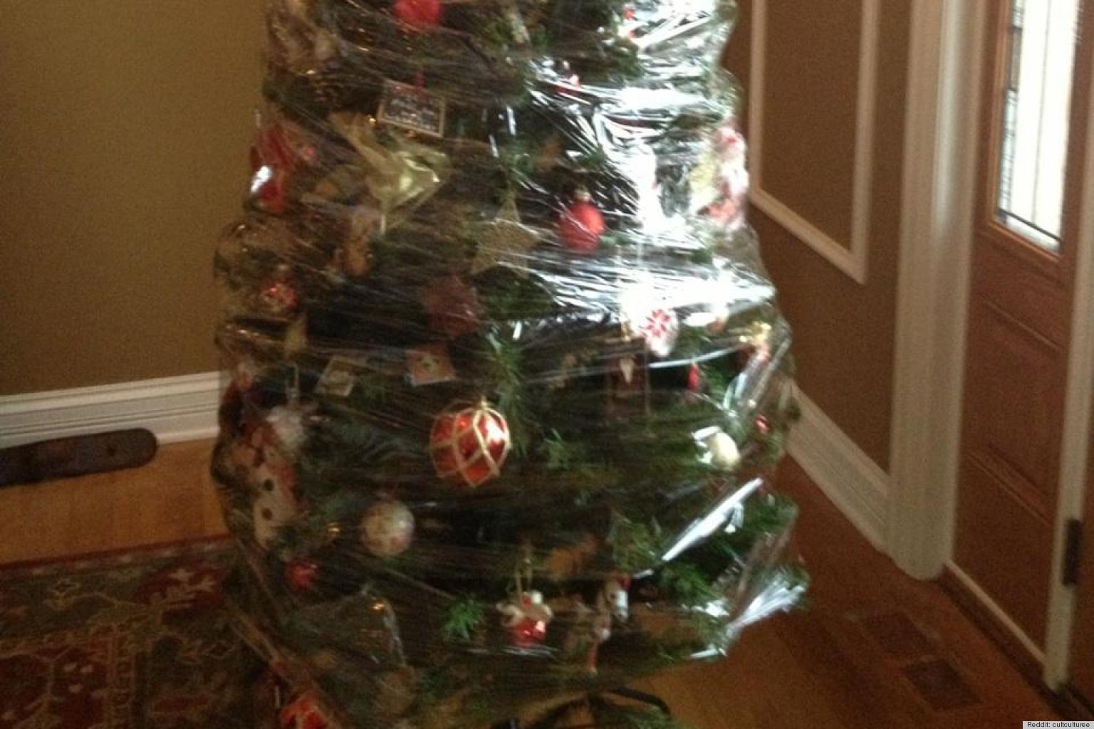 Is It Time To Take Down Your Christmas Tree Yet? | HuffPost