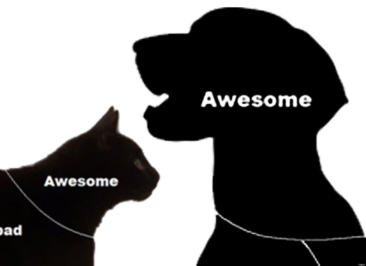 how to pet cats \u0026 dogs (chart) huffpost Dog Dorsal Diagram