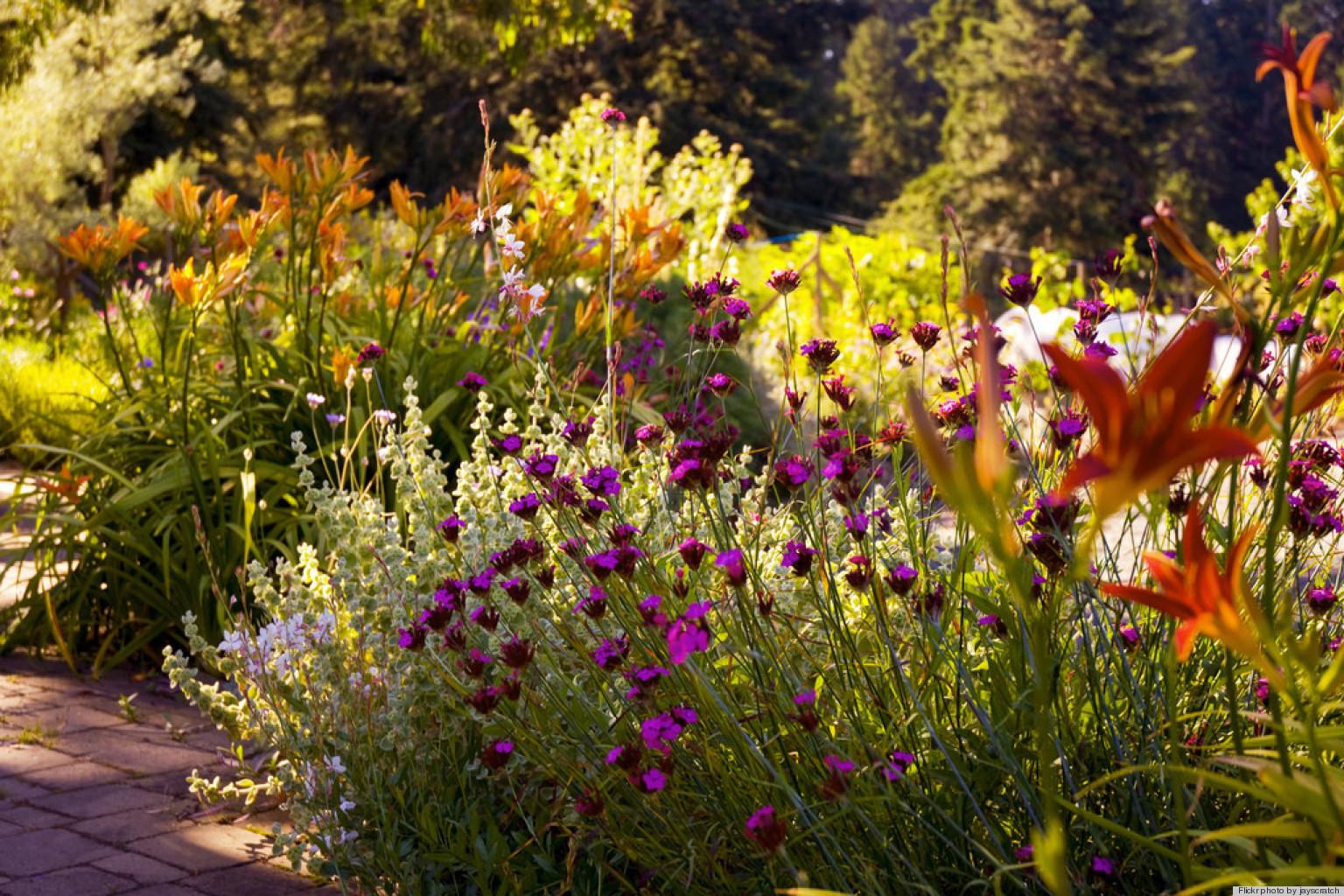 Gorgeous Garden Photos That Are Making Us Crave Spring (PHOTOS ...
