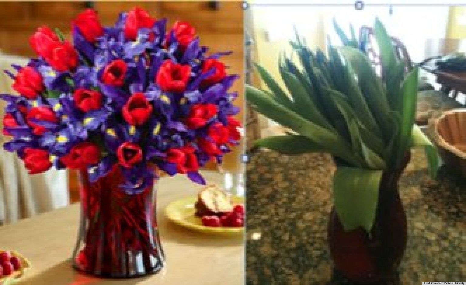 Proflowers receives barrage of twitter complaints following bad proflowers receives barrage of twitter complaints following bad valentines day bouquets photo huffpost reviewsmspy